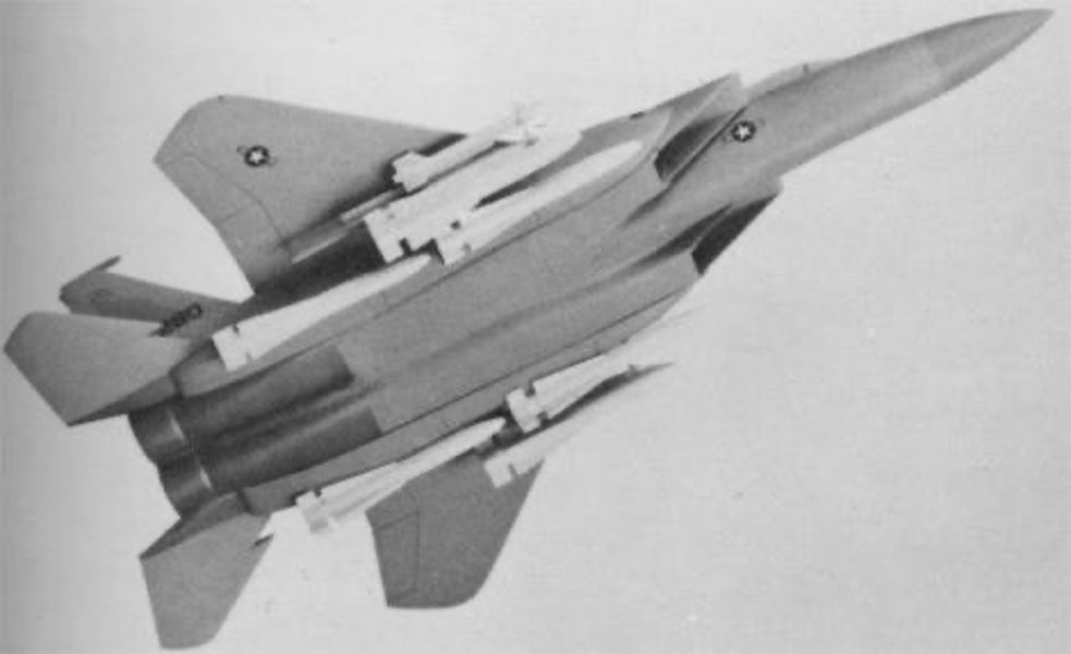The F-15N Sea Eagle: in the 1970s McDonnel Douglas proposed a navalized version of the F-15 Eagle but it was never up to the F-14 Tomcat